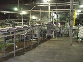 Conveyance and Pasteurizer Line
